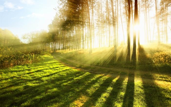 Rays of Healing