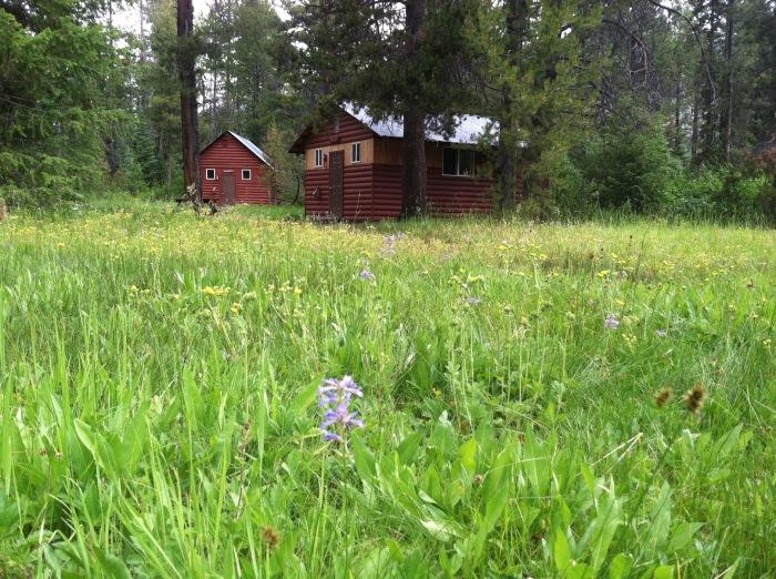 Sawtooth Cabins.jpg