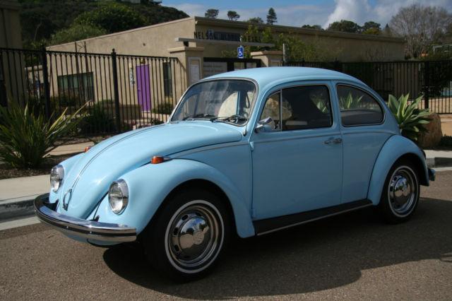 Bug Blue